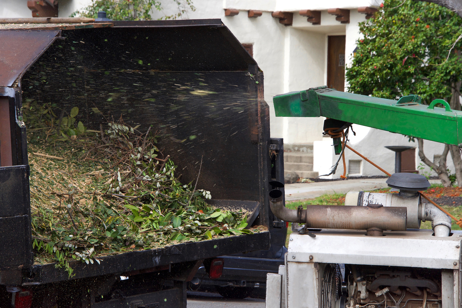 Wood chipper blowing tree branches cut up into the back of a truck. A tree chipper or wood chipper is a portable machine used for reducing wood into smaller wood chips.